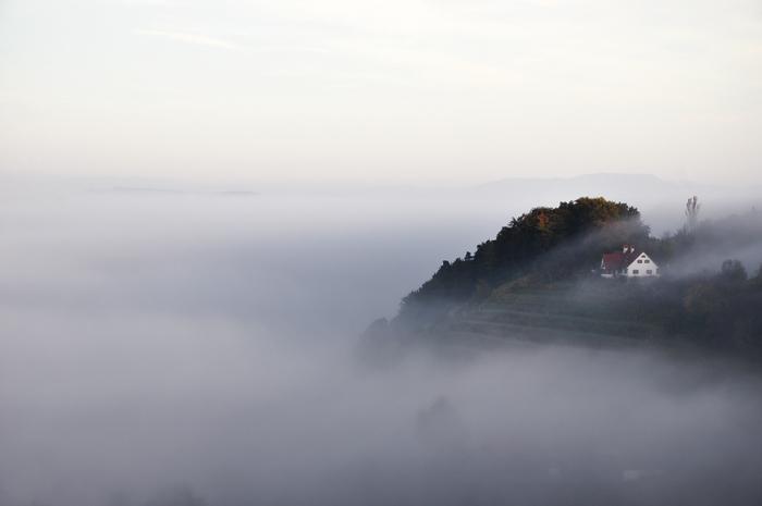 suedsteirische-weinstrasse-foto_11