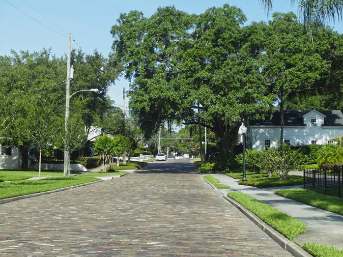 Eine typische grüne Wohnstraße außerhalb von Downdown