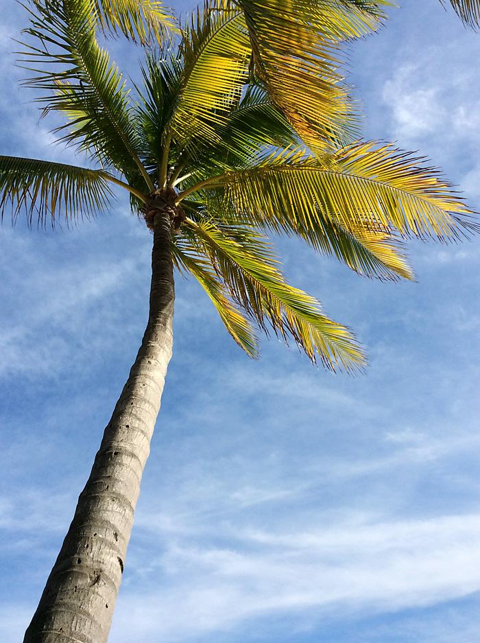 Reisebericht Key West Florida 3