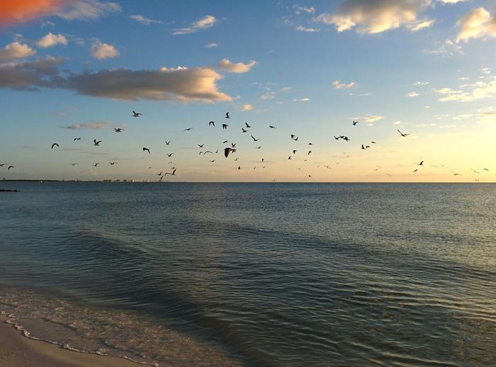 Rieseziel im Winter: Florida 1