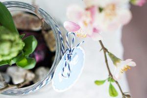 Fruehlingsblume im Glas 3