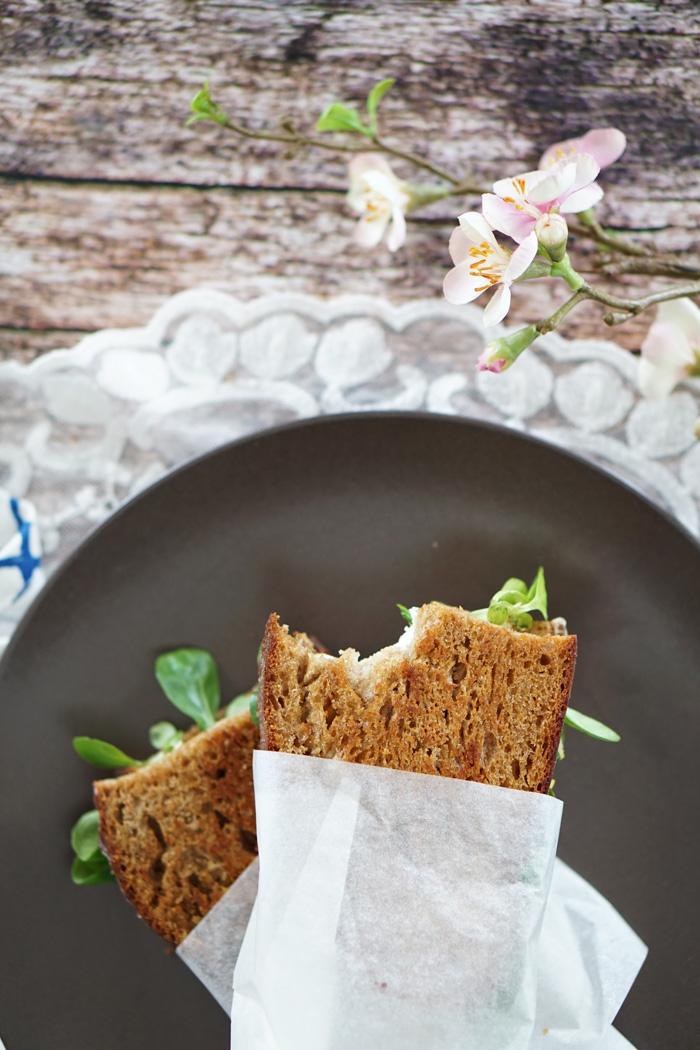 Gegrilltes Schwarzbrot Mozzarella Sandwich mit Feldsalat 2