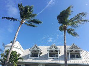 Travel Diary Key West Reisebericht Key West Weihnachten 22