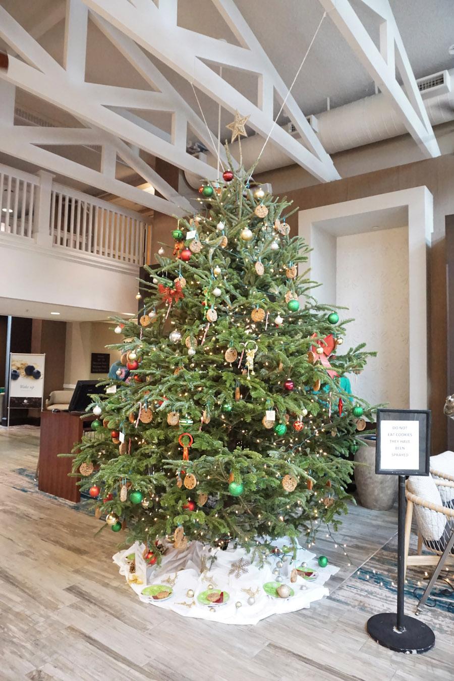 Travel Diary Reisebericht Key West Weihnachten 3