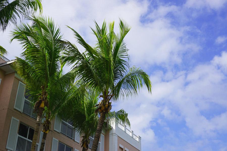 Travel Diary Reisebericht Key West Weihnachten 5