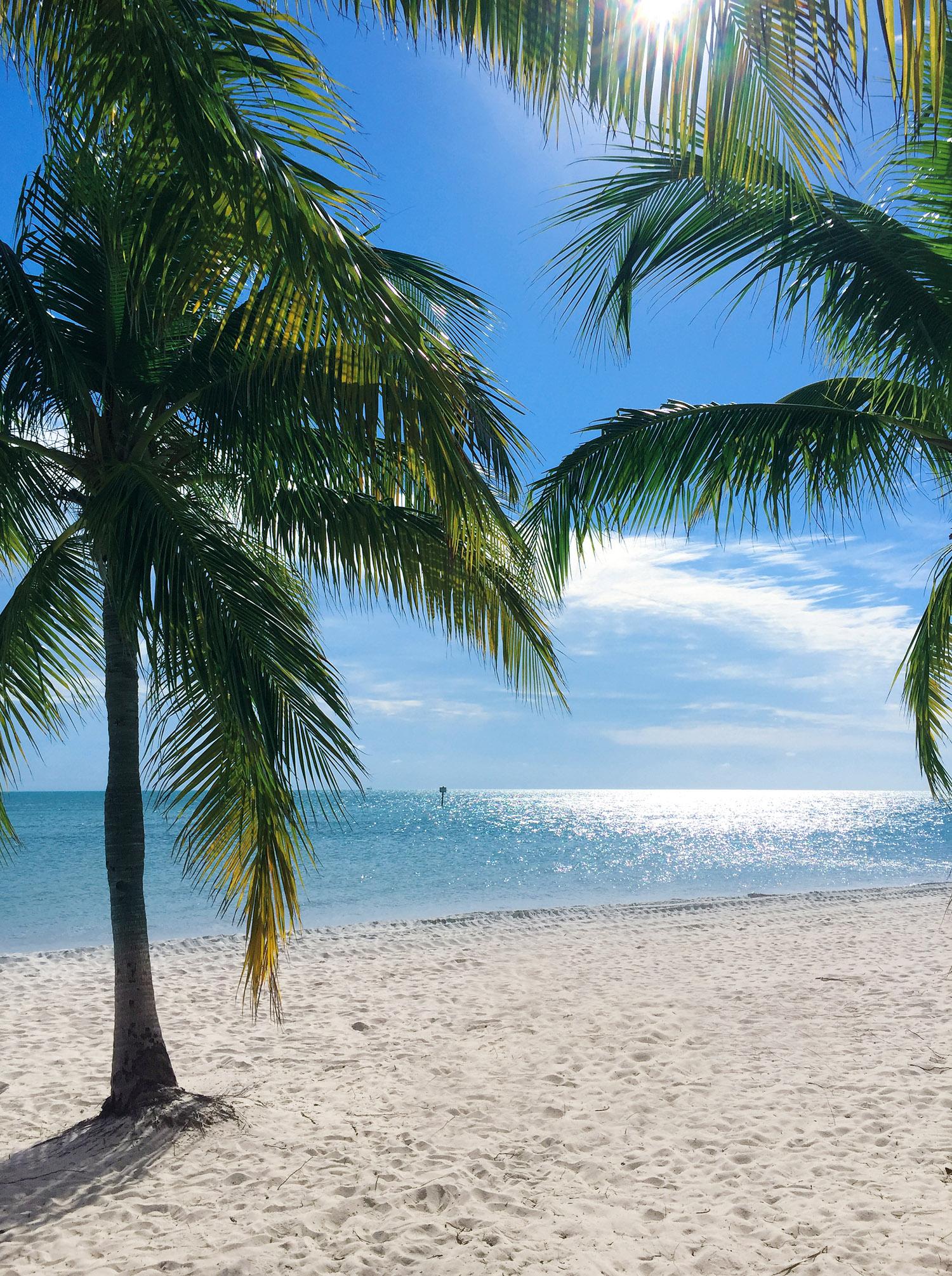 Travel Diary Reisebericht Key West Weihnachten