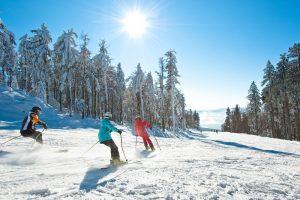 Hotel INNs Holz-skifahren 2