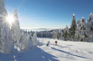 hotel-innsholz-skifahren