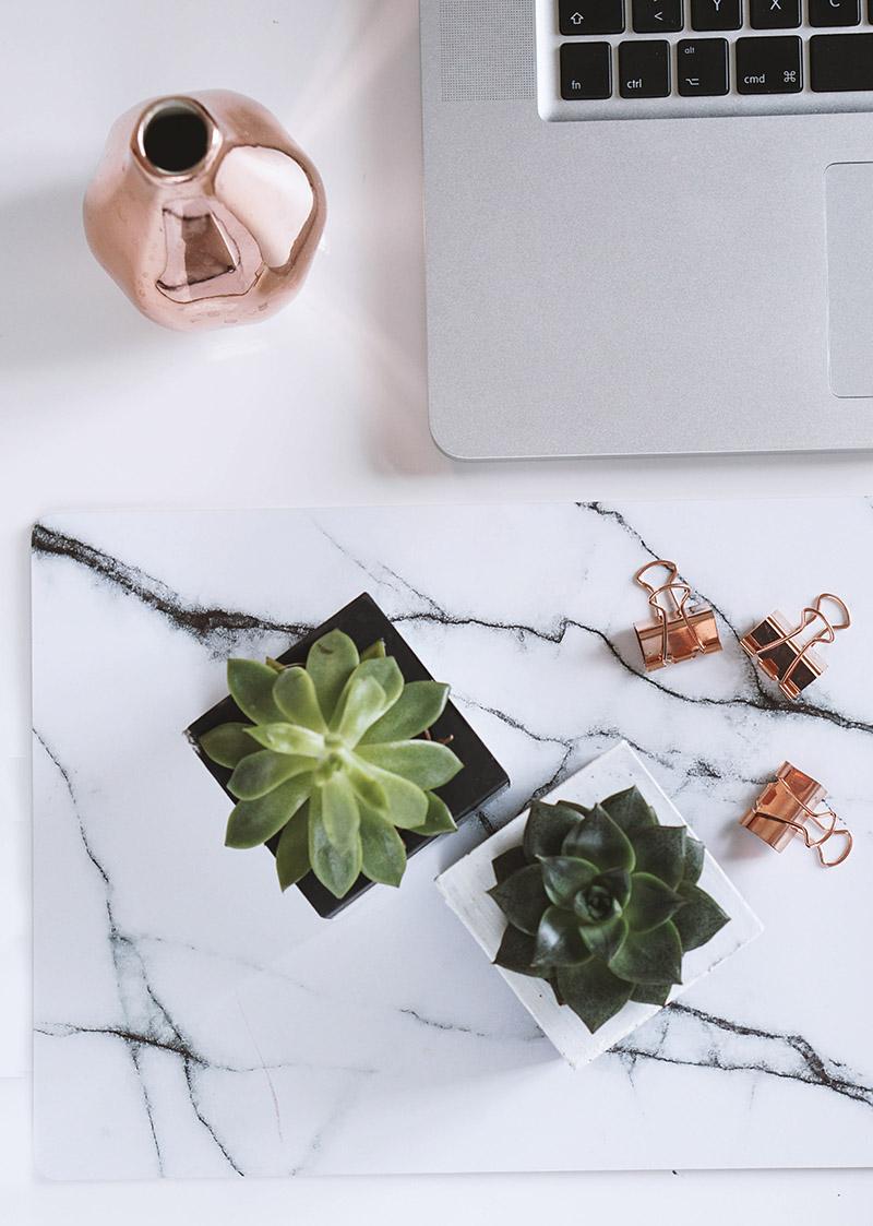 Blumen fuers Büro und ein kleines Beton DIY