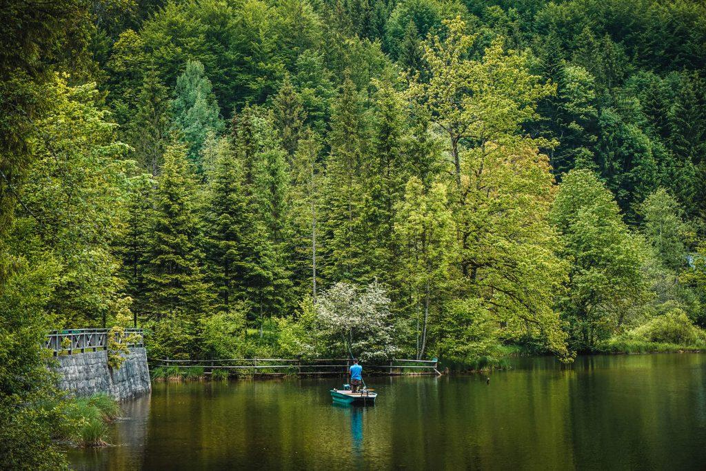 Retreat in der Natur Bewusst genießen in Bad Ischl